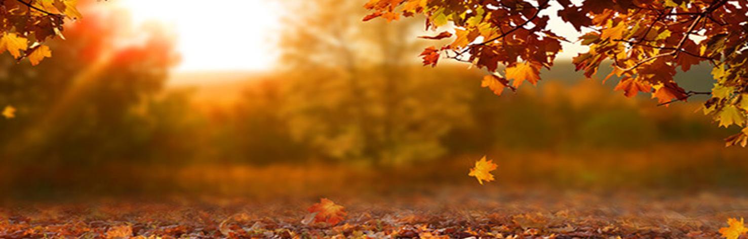 Une rentrée dans le ton d'un clair obscur d'automne